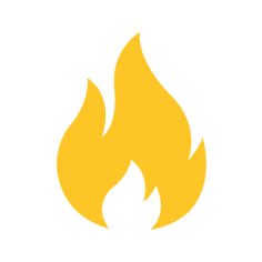 Wellington Blaze Logo